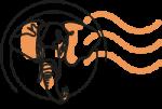 Logo Baobabwe